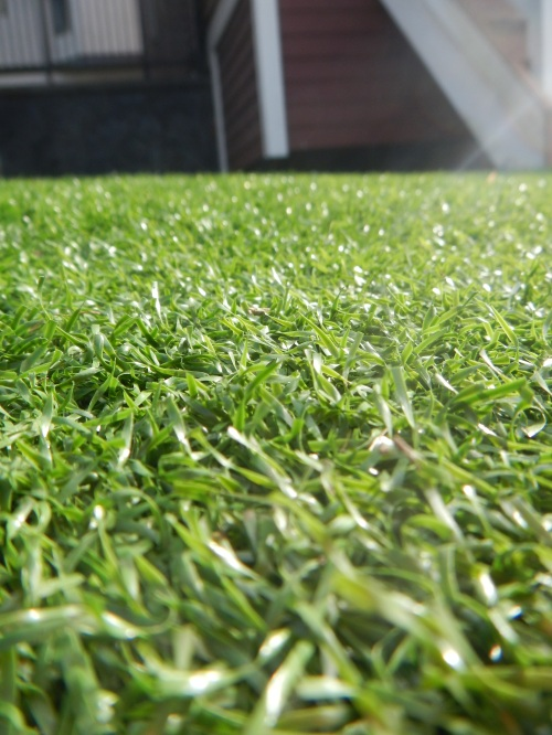 Gore St Artificial Turf
