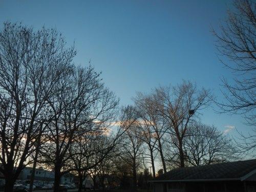 Strathcona Park Sunset
