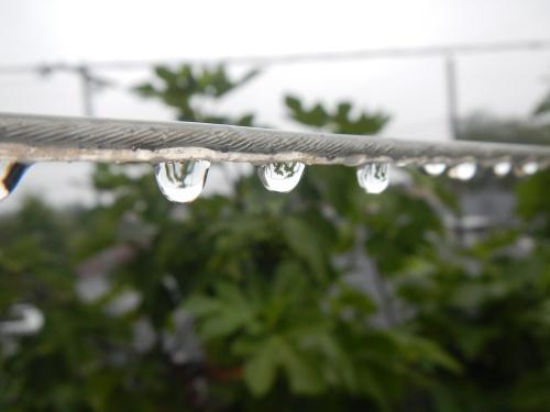 July 24, 2015 Rain