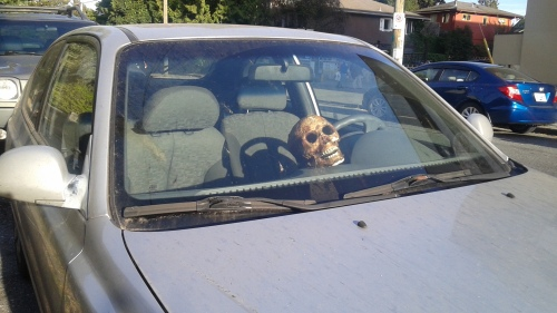 Dashboard Skull